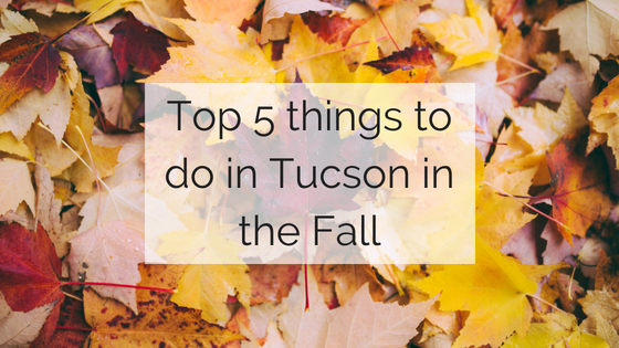 Tucson Moving Service brings you the top 5 things to do in Tucson in the fall.