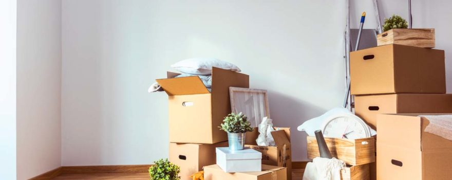 Organize your home on moving day- Tucson Arizona